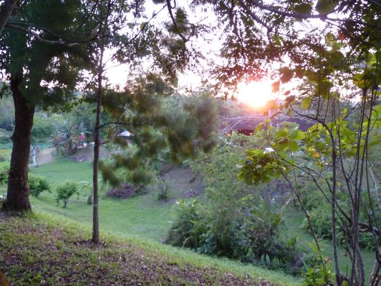 Sepilok Forest Edge Resort: View from the chalet terrace