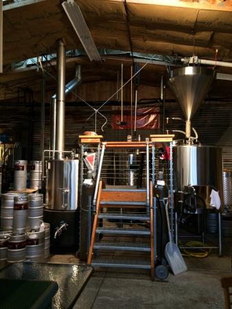 Cathlamet, WA: Brew House