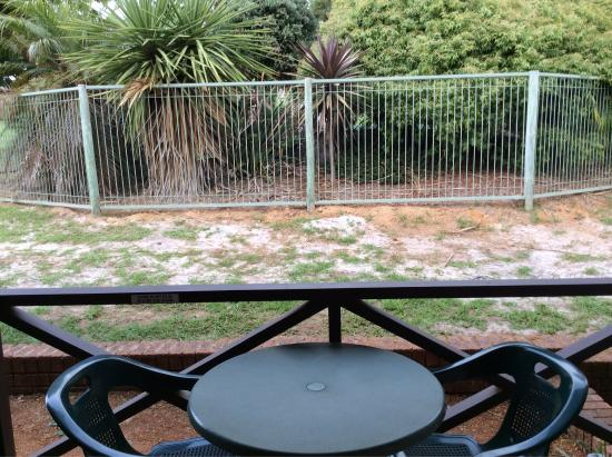Karri Forest Motel : View from room