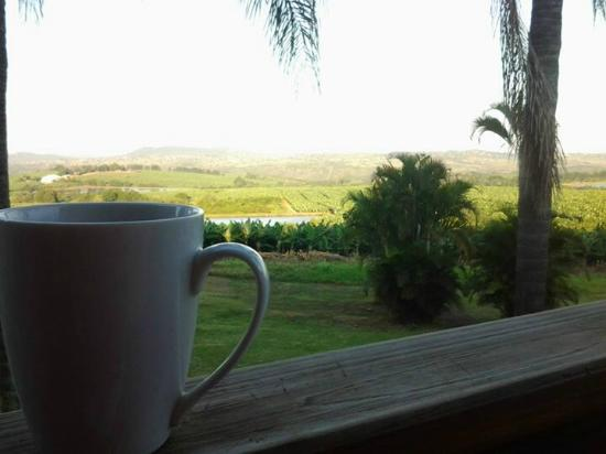 Nabana Lodge: What a view from stoep, relaxing with coffee.