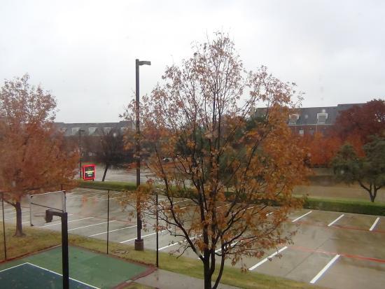 Homewood Suites by Hilton North Dallas-Plano : Vista da janela do quarto, que dava para parte do estacionamento