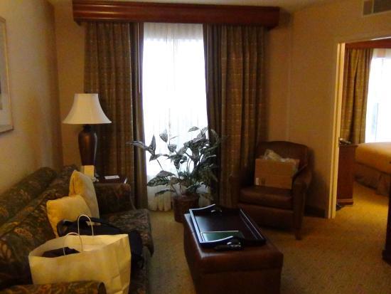Homewood Suites by Hilton North Dallas-Plano : Sala de estar da suíte