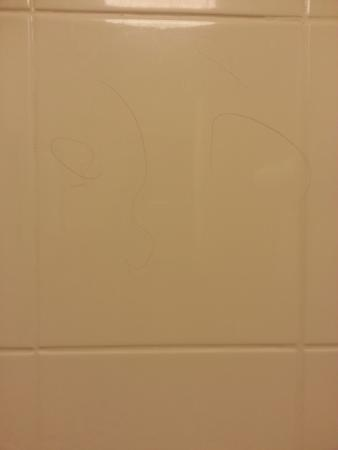 SpringHill Suites Norfolk Old Dominion University : hair on bath tub wall
