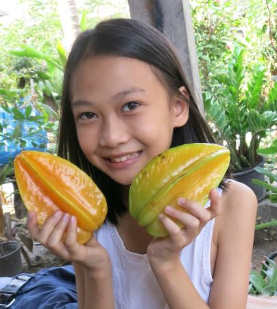 Saap Restaurant: Rung's daughter Ploi with some ripe starfruit