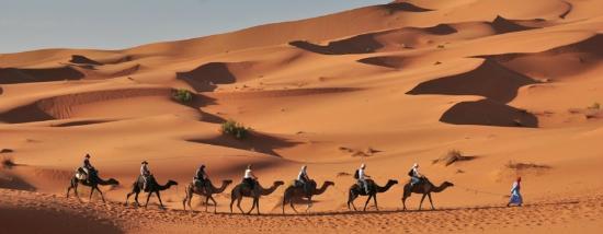 Zagora Desert Travel