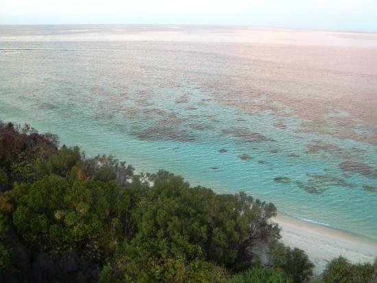Apo Reef Natural Park : The waters surrounding the island