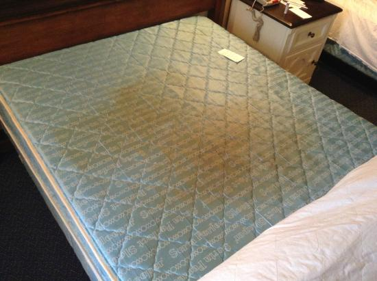 Seralago Hotel and Suites: Room #535 mattress was a health code violation at the very least.