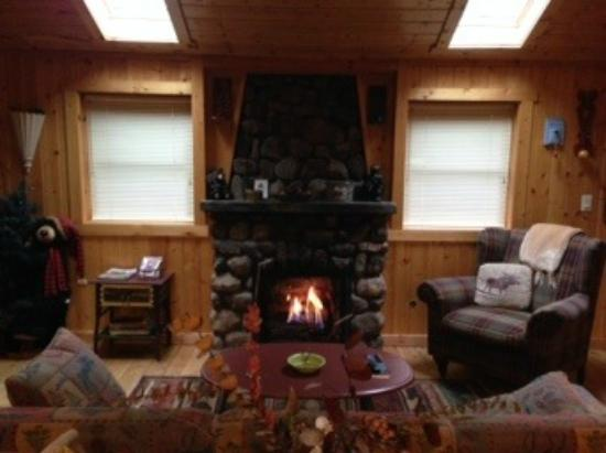Knotty or Nice Cabin : Living room
