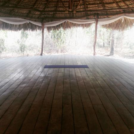 Equilibrio Yoga Art Surf Resort Outdoor Studio