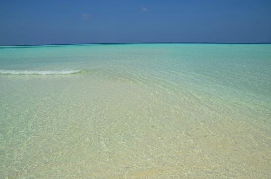 Maldiverna: океан