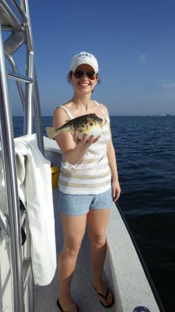 Bradenton, FL: Caitlin's Puffer