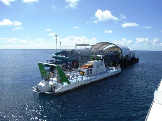 Great Barrier Reef : Ponton and platform for diving from GBR