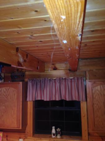 My Cabin Vacation: Hanging from the kitchen ceiling