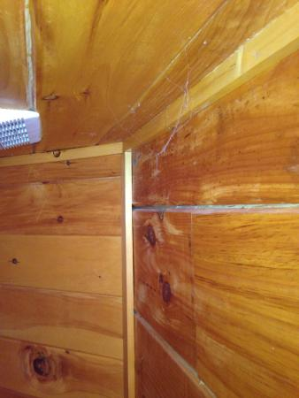 My Cabin Vacation: Disgusting