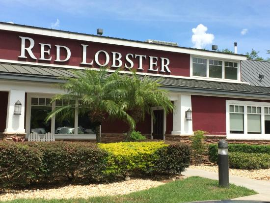 Jan 18,  · FILE - This Tuesday, Sept. 13, , file photo, shows a Red Lobster restaurant in North Miami, Fla. Red Lobster CEO Kim Lopdrup says the company has .