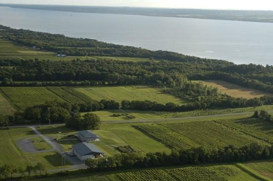 Anthony Road Wine Company: Arial view of our land and facilities