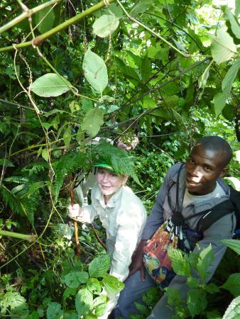 Kabale, Oeganda: Bwindi Impenetrable National Park