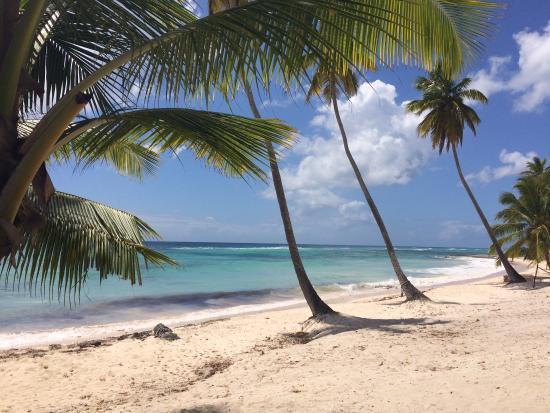 Bayahibe, جمهورية الدومينيكان: Am 2. Strand