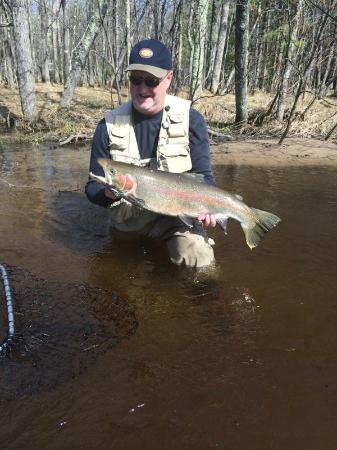 Pere Marquette River Lodge: Big, Wild Steelhead Trout On The Pere Marquette
