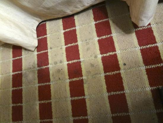 Best Western Plus Olive Branch Hotel & Suites : Carpet stains beside bed!