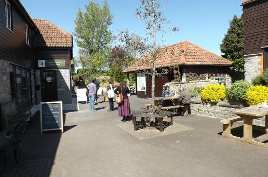 The Willows & Wetlands Visitor Centre: The main yard area