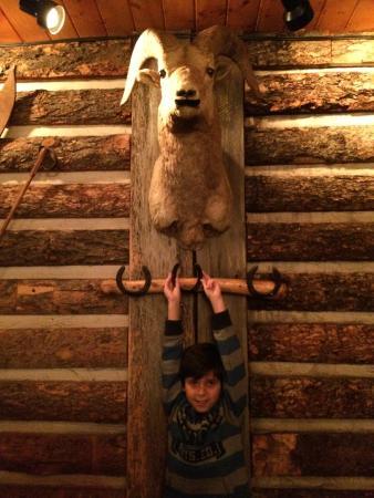 The Salt Creek Steakhouse : Decoração