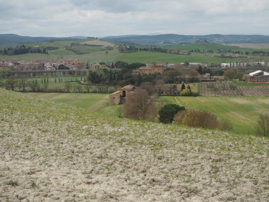 Castello di San Fabiano: We went for a walk up the hill and this is what you can see