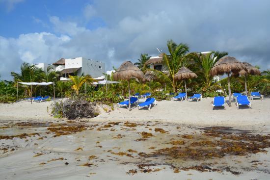 Almaplena Eco Resort Beach Club Hotel