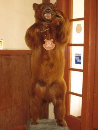 The Lodge Resort and Spa: Stuffed Life Size Bear to Welcome You!