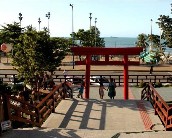 – Foto De Jardim Japonês De Fortaleza, Fortaleza – TripAdvisor~ Fotos Do Jardim Japones Em Fortaleza