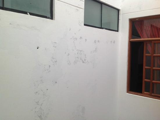 Casa San Martin : walls in need of painting