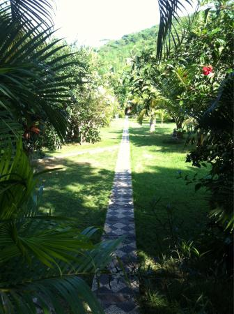 Rhipidura Cottages: The garden path