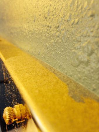 Rodeway Inn: Dust