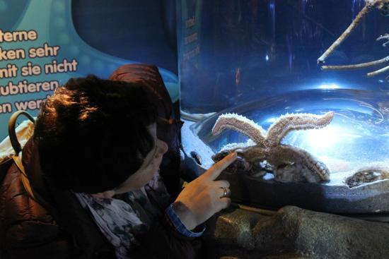 Sea Life - Picture of SEA LIFE Speyer, Speyer - TripAdvisor