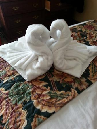 Skaneateles Suites: the swans on our bed