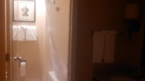 Homewood Suites by Hilton Atlanta-Peachtree Corners/Norcross: bathroom
