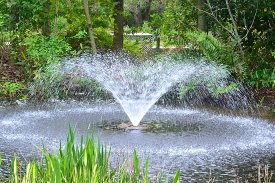 Fountain Picture Of Florida Botanical Gardens Largo Tripadvisor