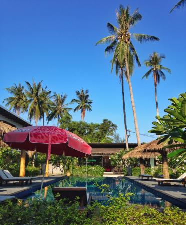 The Nidhra Boutique Resort: Pool paradise
