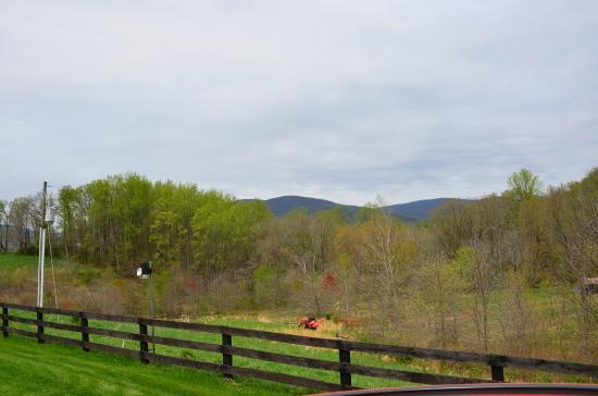 Fairhill Farm: View from the farm