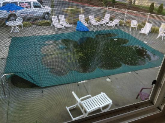 Motel 6 Seattle Sea-Tac Airport South: Nasty pool