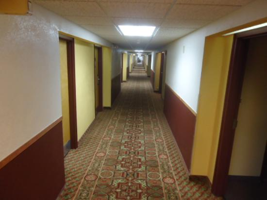 Rodeway Inn &Suites : The very long hallway at the hotel