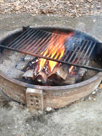 Colleton State Park : Fire pits at each site, grill included. Hinges open and closed for easy wood loading.