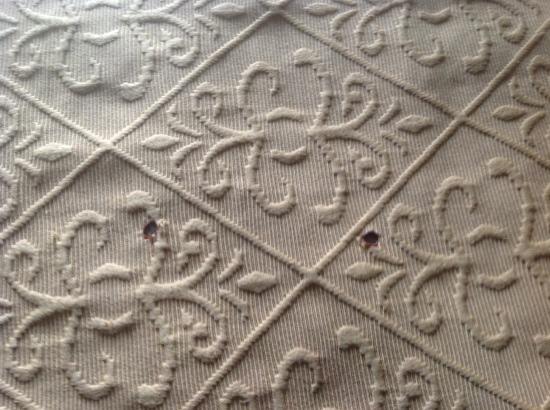 Americourt Hotel & Conference Center: Cigarette burn holes in the bedspread (non smoking room? HA!)