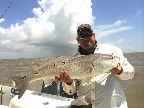 Shark fishing is great picture of cowboy charters for Freeport texas fishing charters