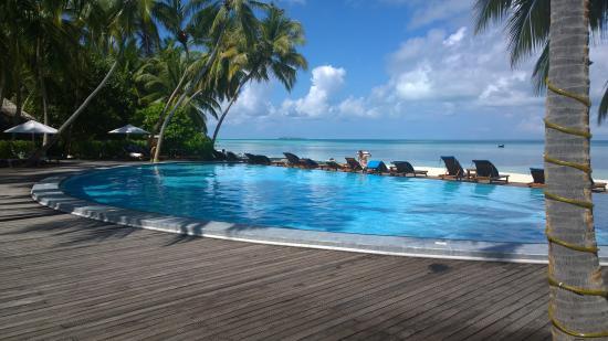 Medhufushi Island: nice pool good service