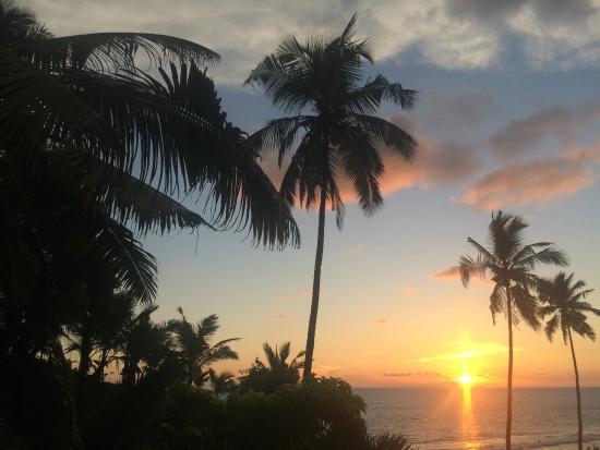 Gumnut Beach House Homestay: beautiful sunset on south cliff 5mins walk away