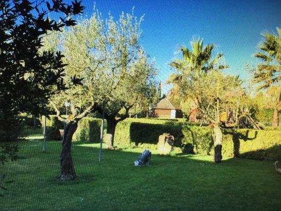 IL Piancardato Country House: giardino...