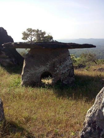 Somvarpet, India: Dolmens