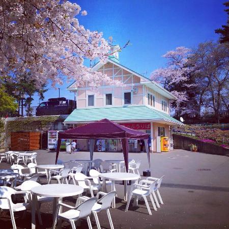 Maebashi, Japan: 園内
