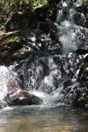 Pousada Verde Folhas : Cachoeira